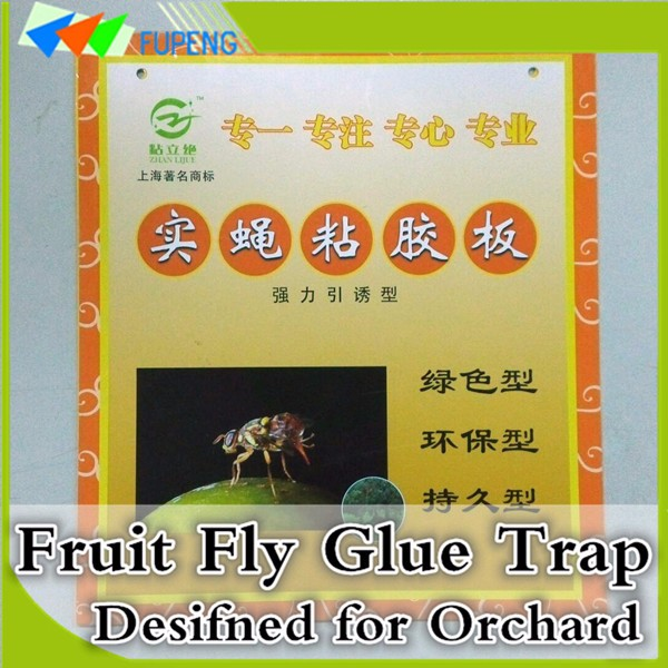 FUPENG Physical Control Hot Sale Hot Fruit Fly Trap Flying Insects