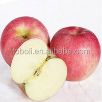 113# fuji apples wholesale fruit prices