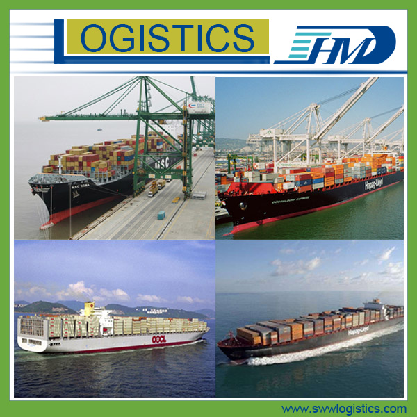 FCL/LCL Sea Shipping Agent Container Forwarder From China to Canada