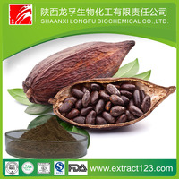 Whole Sale Alkalized Cocoa Powder&Cocoa Extract With Cocoa Beans For Export