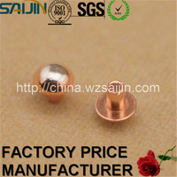 Special Made Switch Electrical Contact Pills