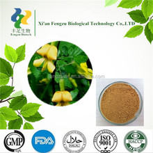 GMP Standard Manufacturer Supply Competitive price Astragalus Root Extract 20-50% Polysaccharides
