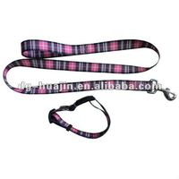dog leash and dog collar