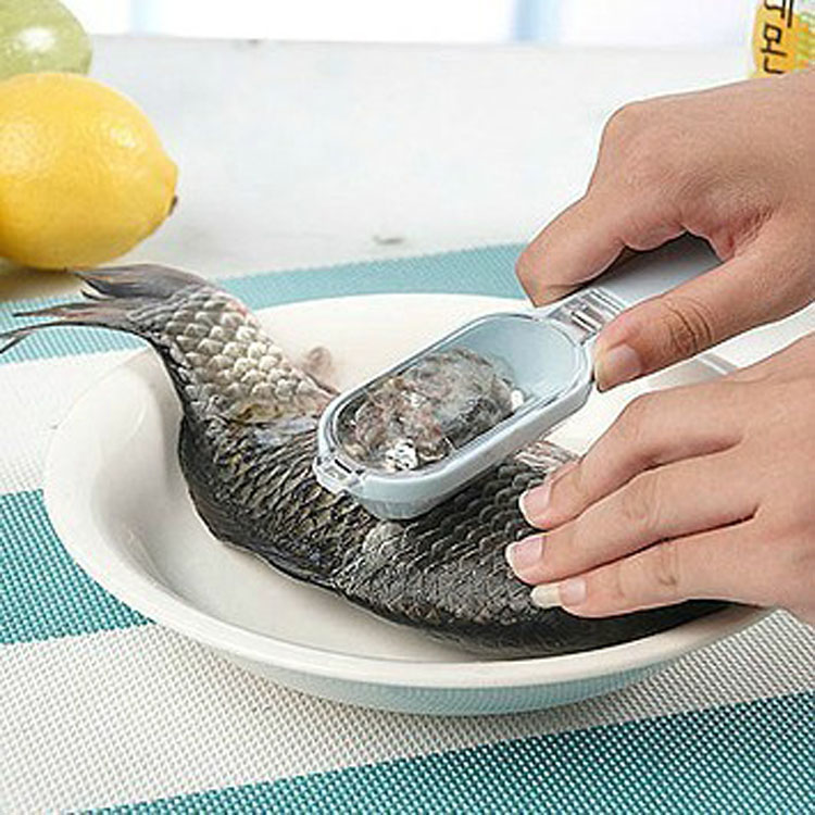 Kitchen Essential Tool Economic Cheap High Quality Fish Scale Planer Knife
