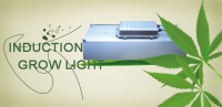New greenhouse grow LED lights 300W , greenhouse hydroponic 300W LED grow lights grow panel grow lamps