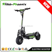 High quality 2 wheel foldable electric scooter evo 800w with CE approval ( Electric Scooter 01-36V 500W/800W )
