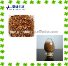 White Mustard Seed Extract Powder
