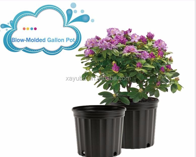 china supplier cheapest 1,2,3,5,10,15,20 plant gallon flower pots for trees