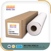 Front Print PET Backlit Film for Printing
