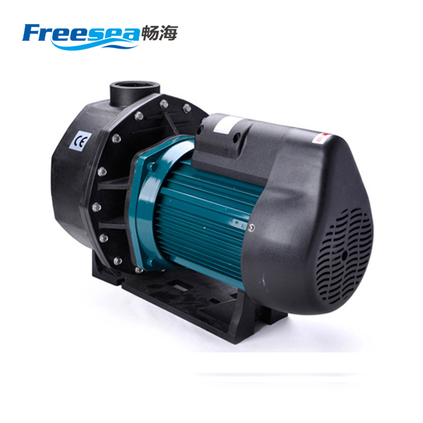 Wholesale 220V belt driven cast iron hand water pump, centrifugal pump for water