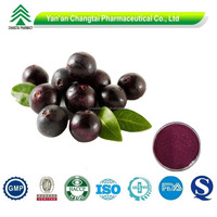 100% Pure Natural acai berry powder acai berry