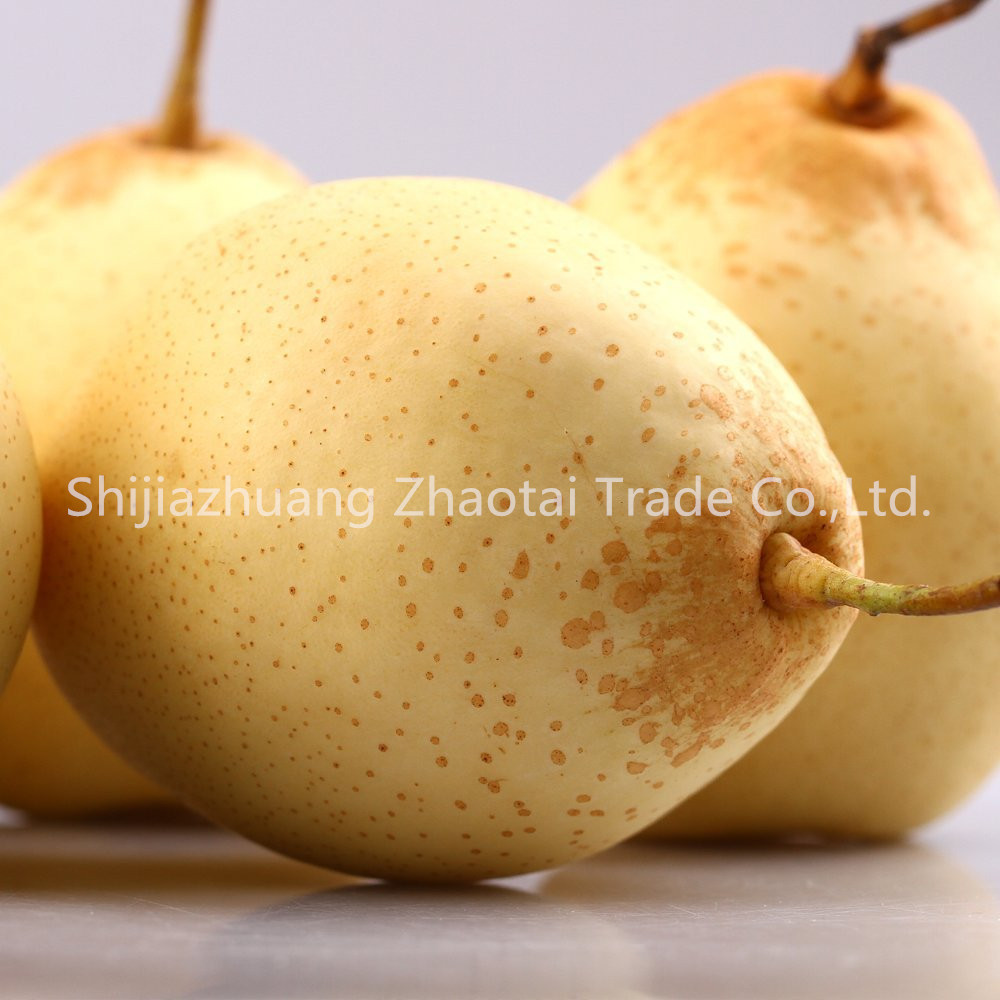 Hebei Fresh Ya pear
