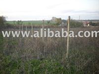 5000 m2 land for building construction