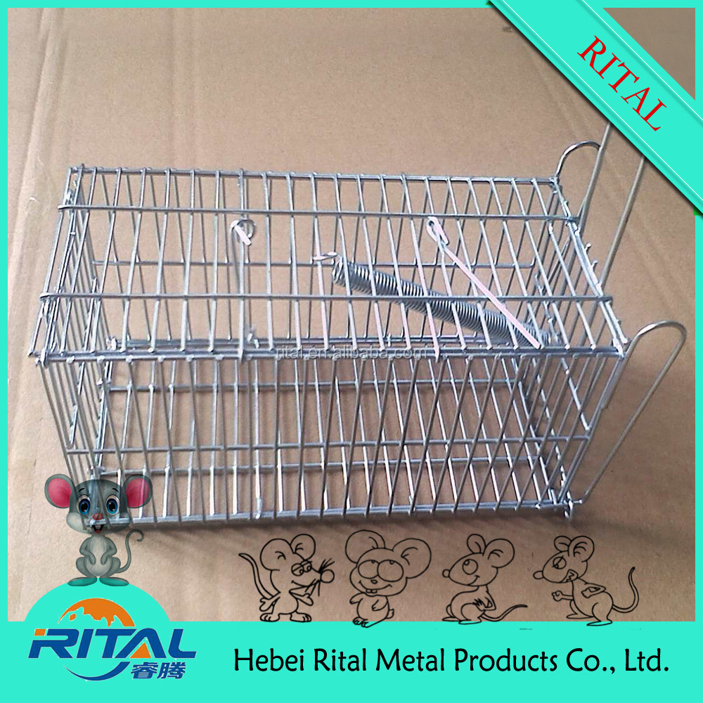 Galvanized Live Animal Cage Collapsible Rat Mouse Trap Cage