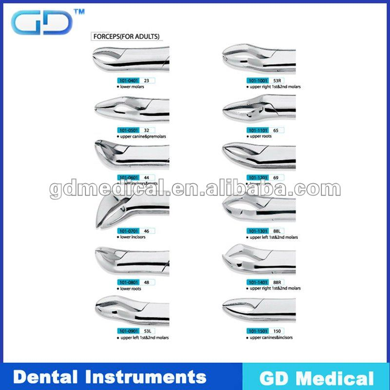 dental extracting Forceps 53L#