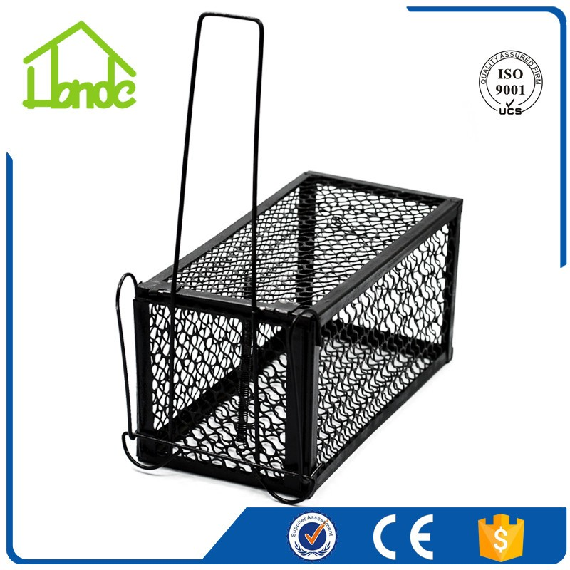Mouse Cage Trap HD220531