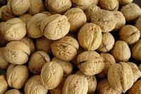 Walnut & Walnut Kernel for sale, New crop