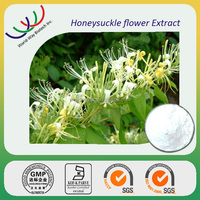 manufacturer supply Chinese herb top quality honeysuckle extract,flos lonicerae japonicae 5% chlorogenic acid