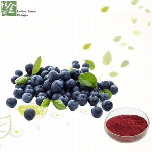 Herbal Supplements Anthocyanin 25% Blueberry Extract Powder