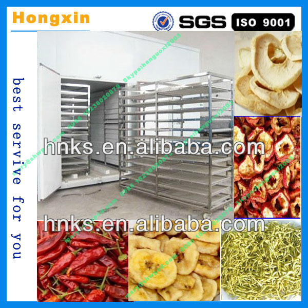 Automatic stainless steel machine dehydrator of fruits