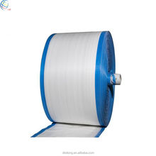China Manufacture Of PP Woven Raffia Roll / PP Woven Fabric