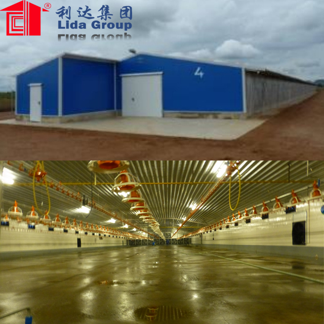 commercial steel frame structure broiler chicken house 122*15.36*3m