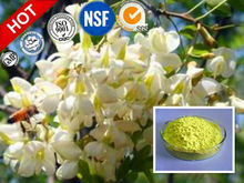 Hot selling bulk quercetin plant extract