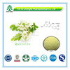 Hot Sale GMP Certificate 100% Pure Natural Quercetin Extract