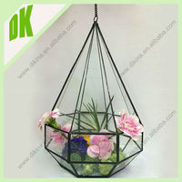 W~~Hanging silver real dandelions seeds terrarium// Factory high quality glass terrarium decorative hanging glass terrarium orb