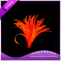 Beautiful dyed rooster Tail Feathers for Holiday Costume