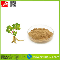 High Quality Herbal pueraria mirifica extract powder 40% Isoflavone