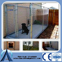 China Baochuan-- galvanized big dog kennels / chain link dog house / metal dog kennels