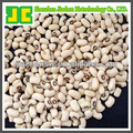 Herb Plant Extract White Kindey Bean Extract