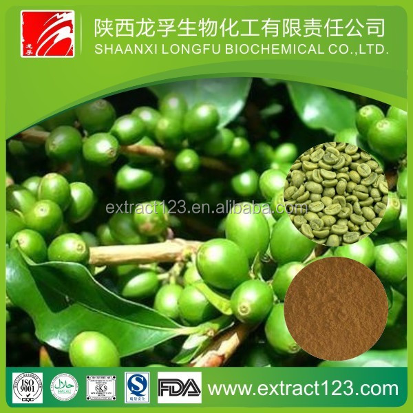 Loss weight green coffee bean extract chlorogenic acid 50%