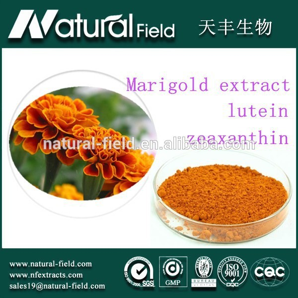 EU market hot selling Herbal Extract! eye vitamins lutein and zeaxanthin