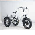 48v500w powerful motor three wheel fat tyre electric tricycle with pedal assistant system for adults