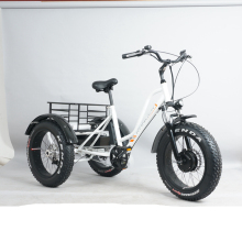 48v500w powerful motor three wheels fat tyre cargo electric tricycle