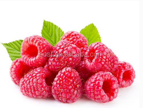 Best quality and pure natural freeze dried raspberry powder with competitive price