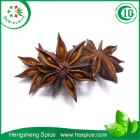 AA Grade Chinese Spices Herbs Illicium Verum Big Red Autumn Star Aniseed