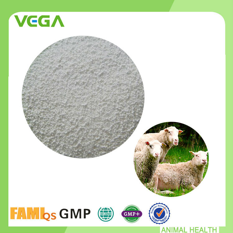 Stomach Function Food Supplement Supplement Herbal Methionine For Sheep