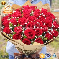 Types of fresh cut flowers decorate home valentines rose flowers