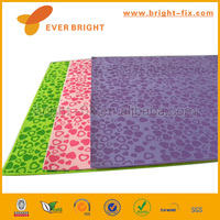 2014 China Supplier eva resin/eva foam mold/eva pet carrier