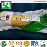 Roasted corn snack for foodstuff direct buy China