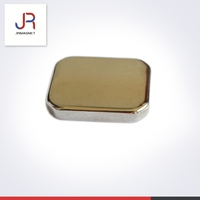 Neodymium Monopole Magnet Customized Shape Colored