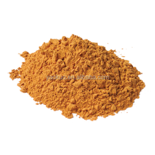 High quality ginger root extract /gingerol /ginger extract powder