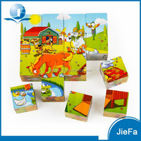 Educational Wooden Cube Puzzle Building Toy Block