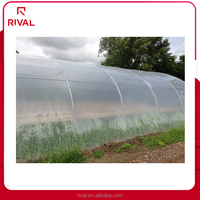 Factory price agricultural green house plastic film