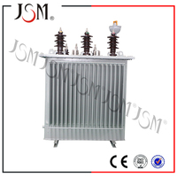 Factory Export 11 Kv Oil Immersed