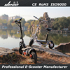 2015 new arraival two wheel self balance 2000W scooter with EEC/COC certificater