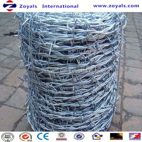 ISO9001:2008 Good Quality Elector Galvanized Barbed Wire